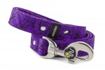 Leash Cracks - Color Fuchsia Violet