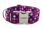 Collar Violet Dots with metal buckle