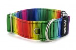Collar Rainbow lines - Detail of D-ring