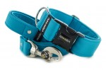 Collar Dark Cyan with a leash