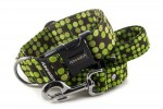 Collar Bright Green Dots with a leash