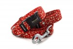 Leash Fishbone Red with the collar