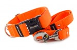 Collar Neon Orange with a leash