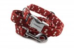 Collar Red Dots with a leash