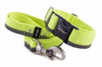 Leash Reflex Neon Yellow with the collar
