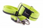 Collar Reflex Neon Yellow I with a leash