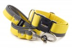 Leash Reflex Pastel Yellow with the collar