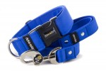 Collar Royal Blue with a leash