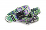 Collar Vitrage Green with a leash