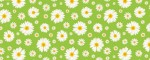 Leash Daisies - Pattern