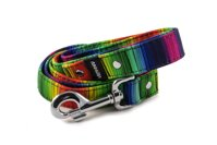 Leash Rainbow lines