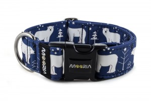 Collar Polar Bear