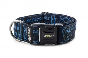 Collar Staffordshire Bull Terrier Blue