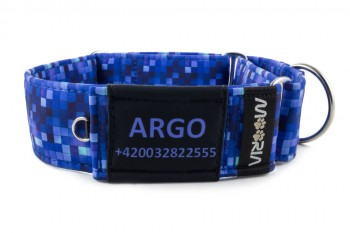 Name tag on Martingale collar