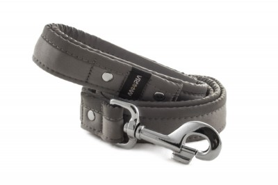 Leash Reflex Gray
