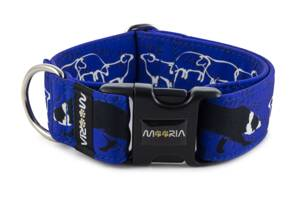 Collar Border Collie Life Blue