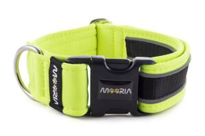 Collar Reflex Neon Yellow II